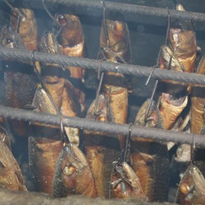 fumage de poissons